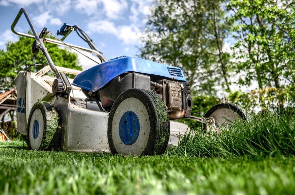 Comment concevoir votre jardin facilement ?